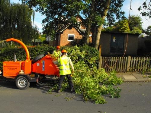tree branch chipping