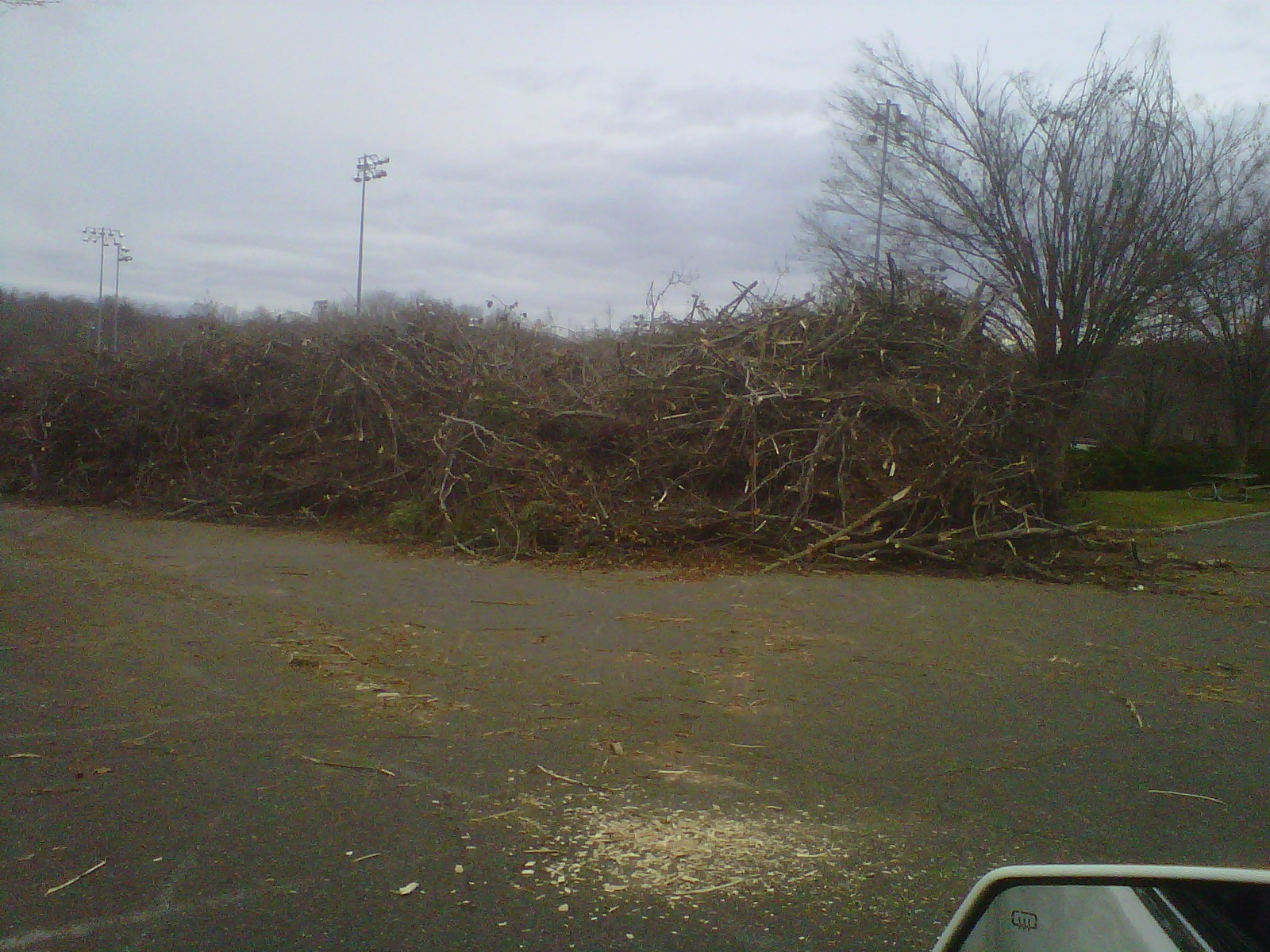 chipping storm debris