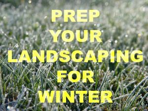 Winter Yard Prep