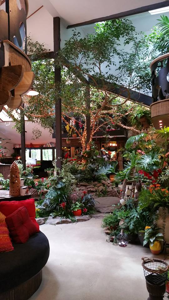 Indoor landscaping - precision tree and landscape nj