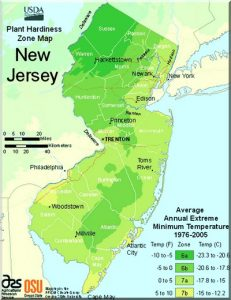 NJ USDA plant hardiness zone map