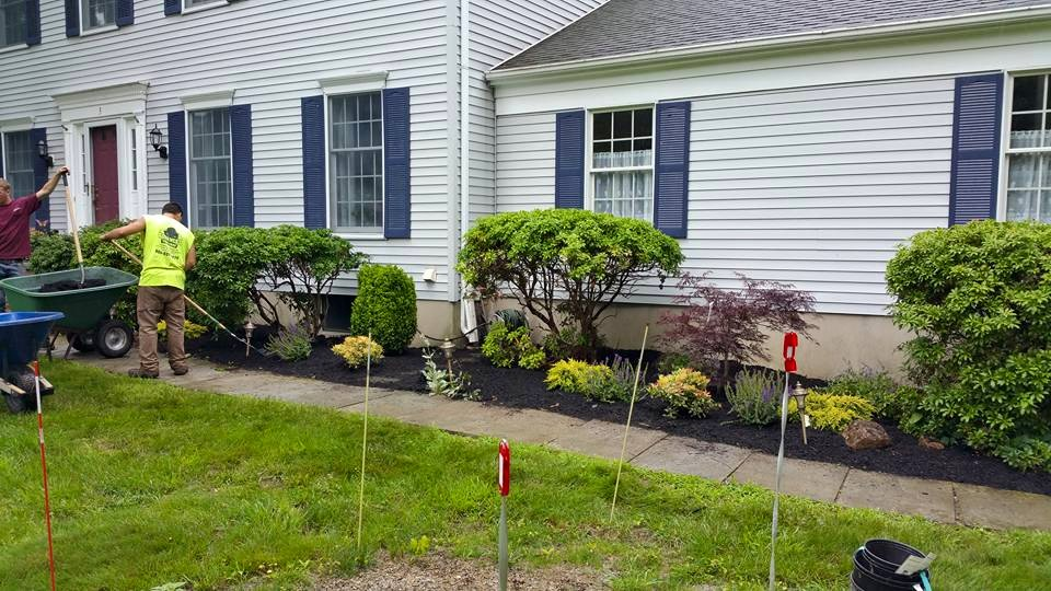 landscape management precision tree and landscape nj 4