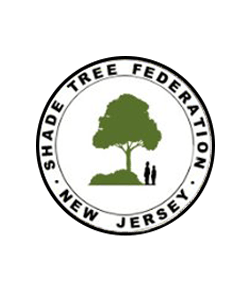 Shade Tree Federation Logo