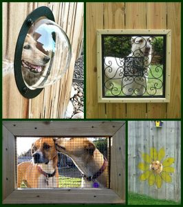 dog friendly fence window