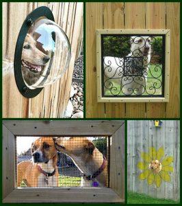 dog friendly fence window