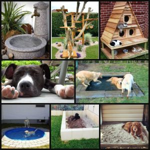 landscaping features for pets