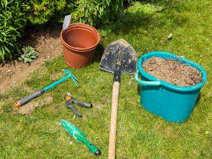 tools on yard