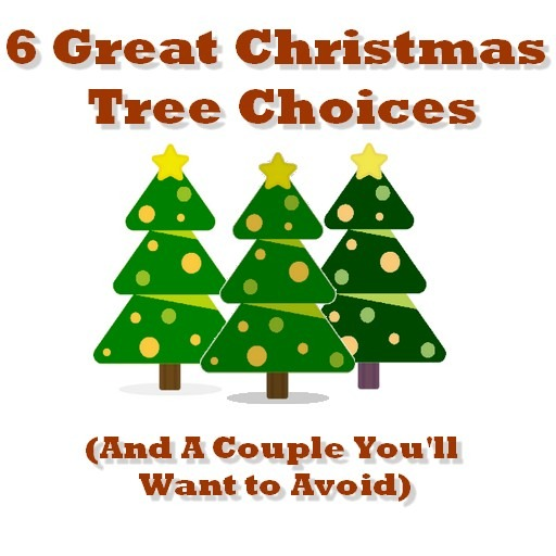 great christmas trees
