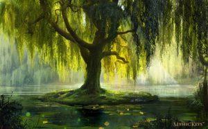 willow tree magic