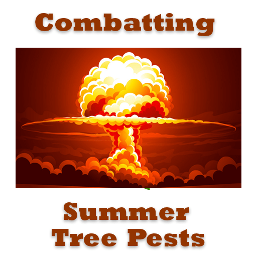 Summer Tree Pests
