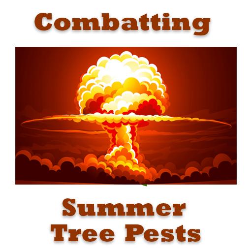 Summer Tree Pests