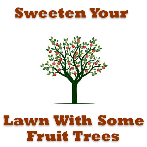 Sweeten Your Lawn with Some Fruit Tree