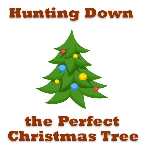 Hunting Down Christmas Tree